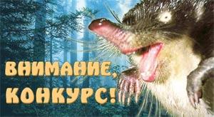 Конкурс - Школьный урок о русской выхухоли